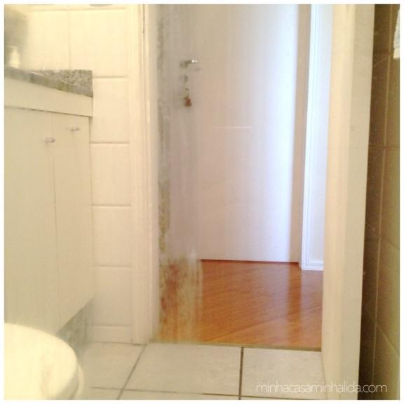 limpar_vidro_banheiro